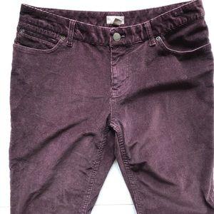 J. Jill corduroy pants